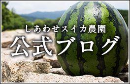 しあわせスイカ農園の公式ブログ